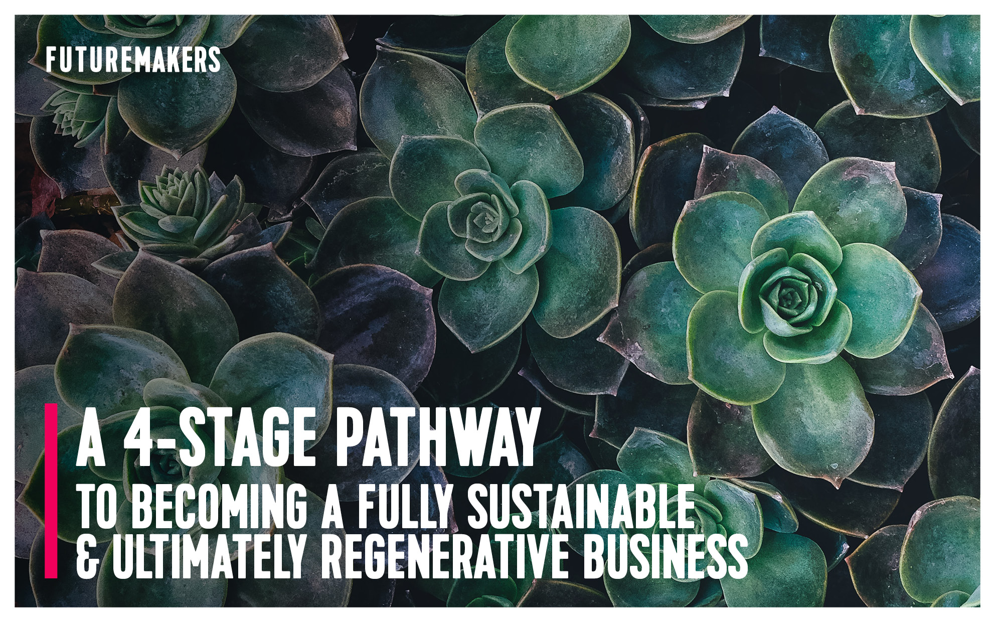 futuremakers-a-4-stage-pathway